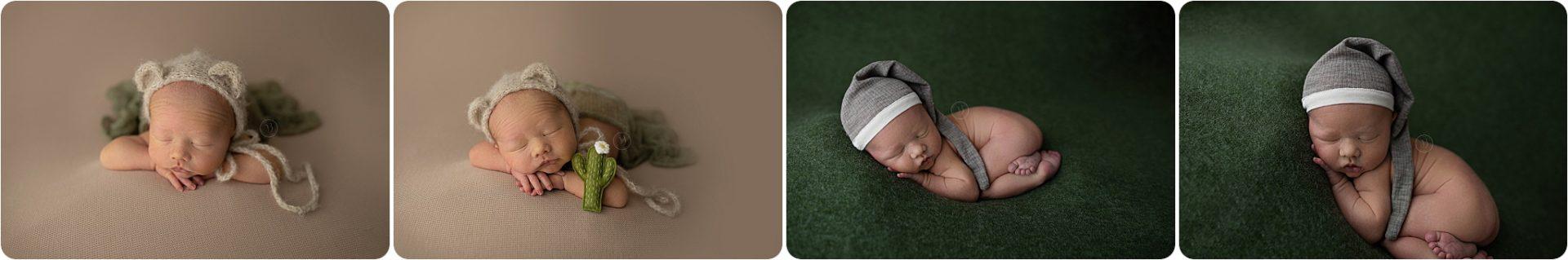 tucson baby cactus in photo shoot