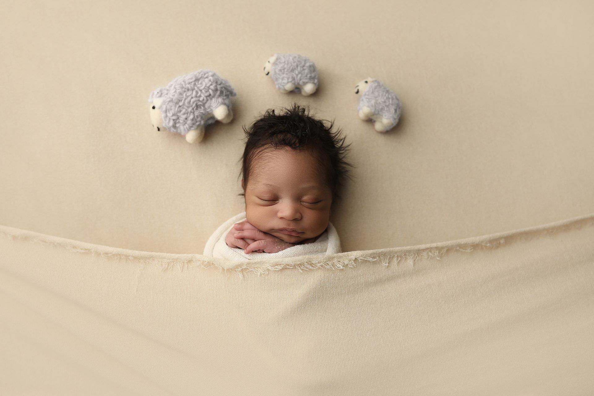 Tucson Baby poses with sheep