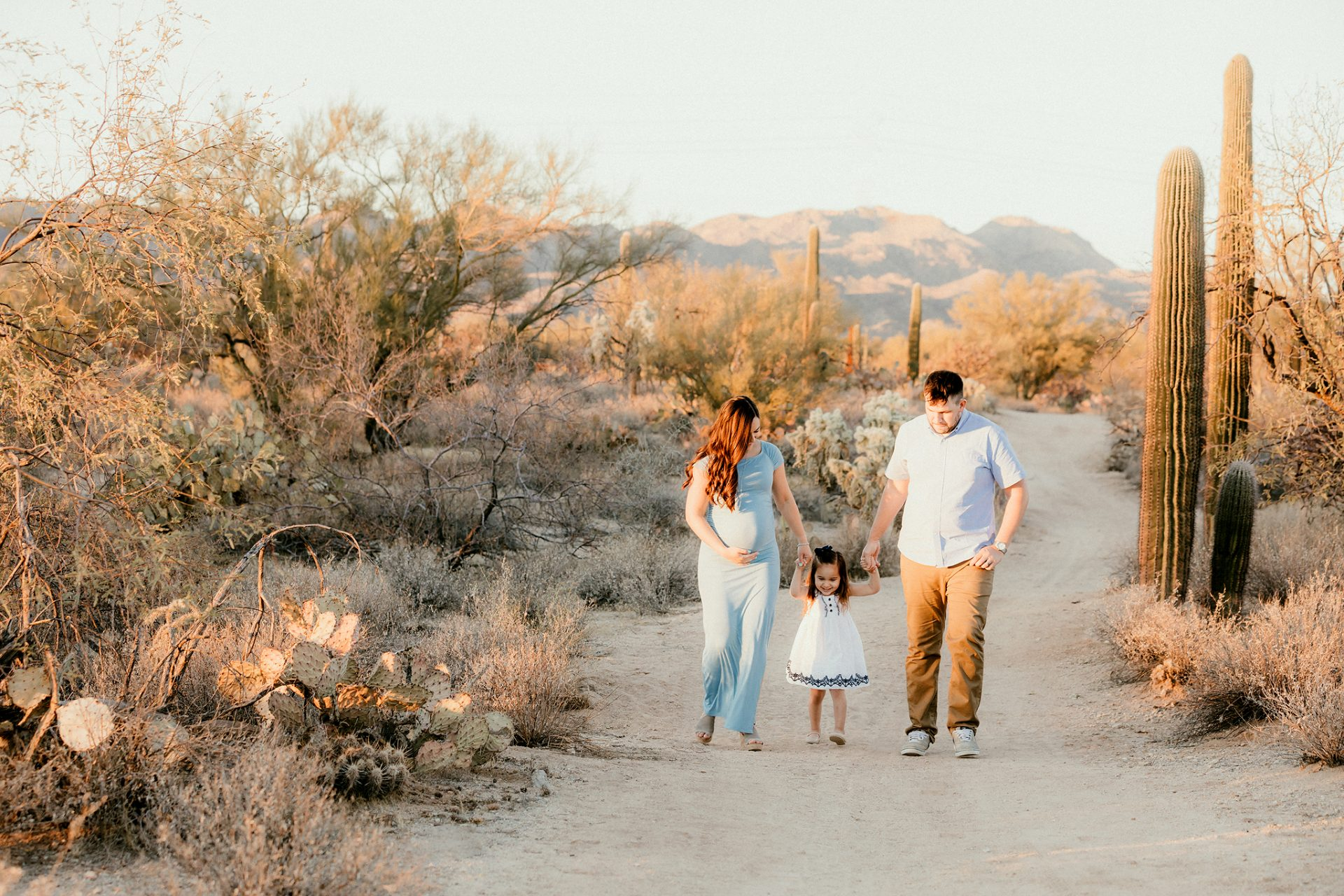 Oro Valley Desert Photographer